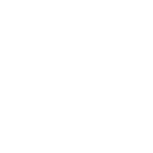 DS Performance Parts